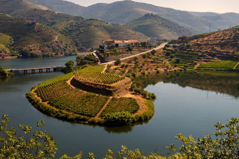 Panoramic Views of the Douro Valley region