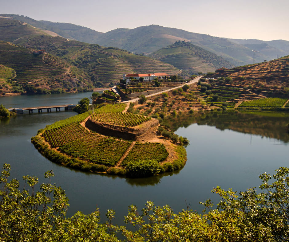 View of Douro Valley Portugal