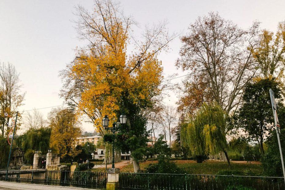 Autumn in Tomar