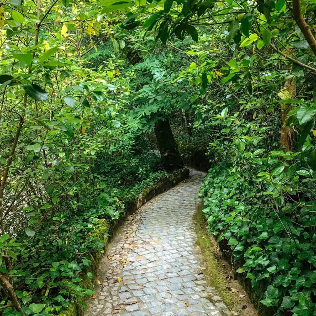 Quinta da Regaleira garden walkway