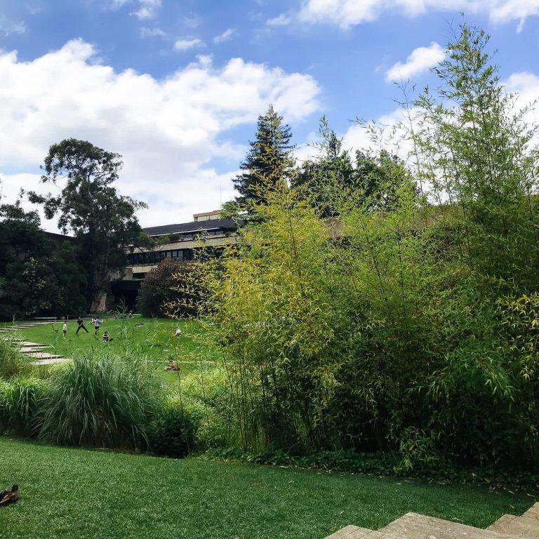 Gardens of the Gulbenkian Museum, Avenidas Novas, Lisbon