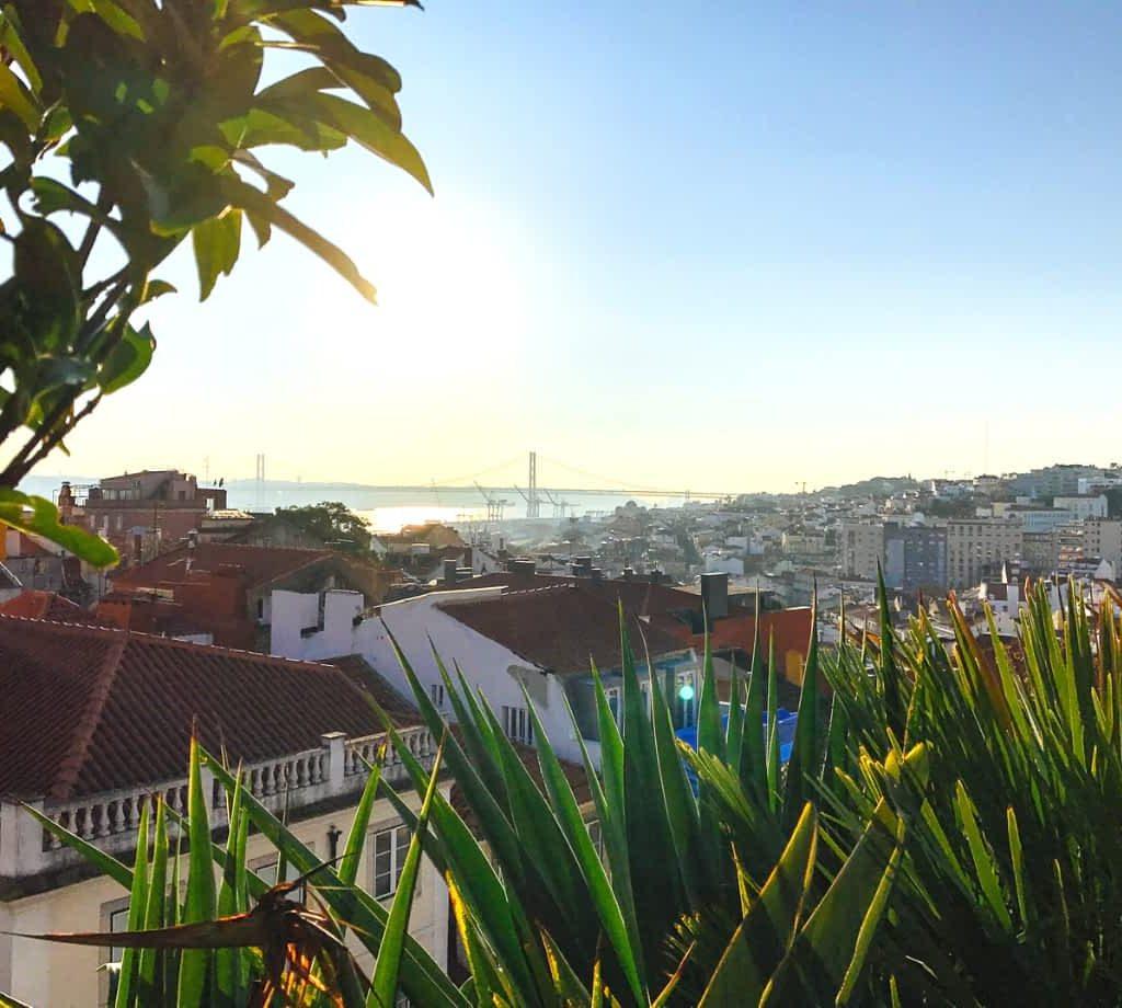 Park Bar, Lisbon view