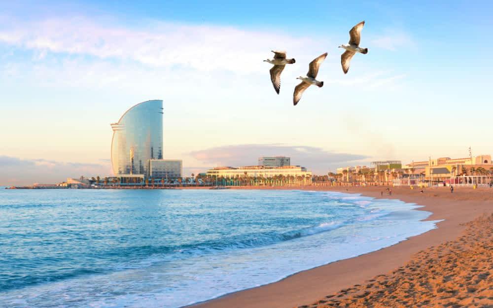 36 Hours in Barcelona - Barceloneta Beach
