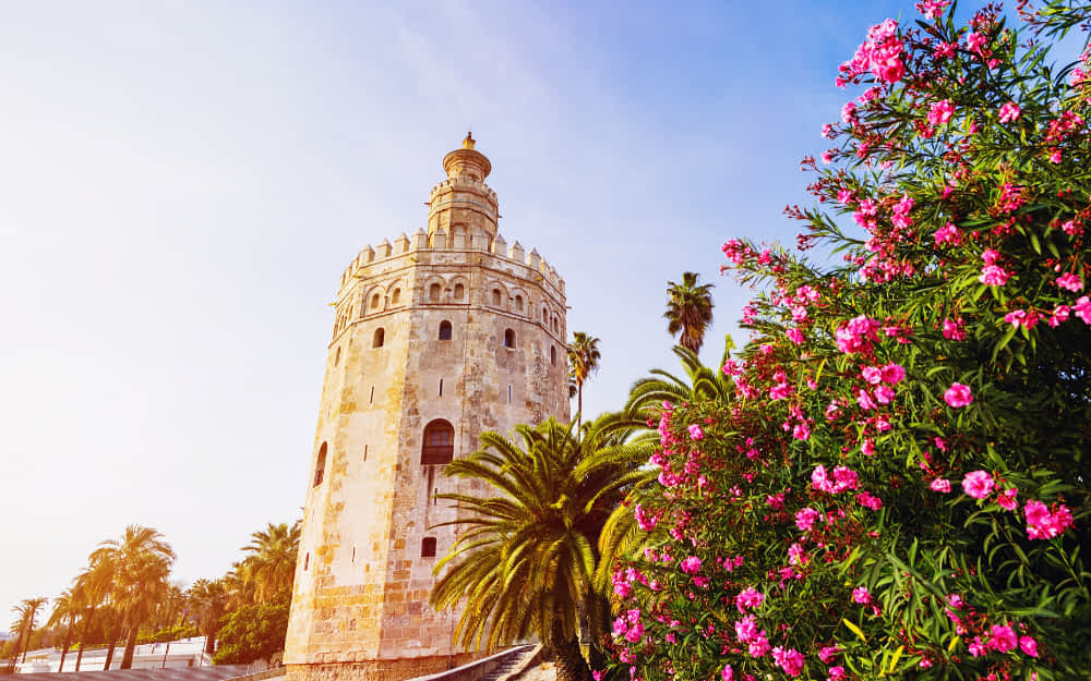 Top things to see in Seville, Torre del Oro