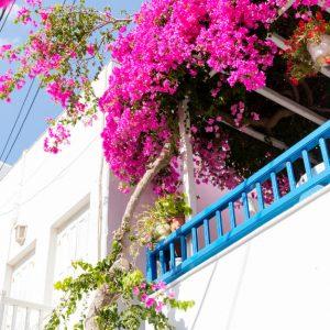 24 Best Mykonos Airbnbs