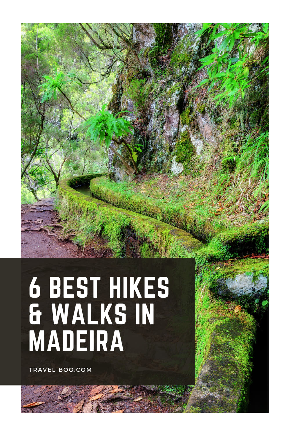 6 Best and Most Beautiful Walks & Hikes in Madeira, Portugal, Worth Discovering! Portugal Travel, Madeira Portugal, Madeira Travel Itinerary, Madeira Travel, Madeira Hikes, Hikes in Madeira, Portugal Hikes, Best Hikes in Portugal