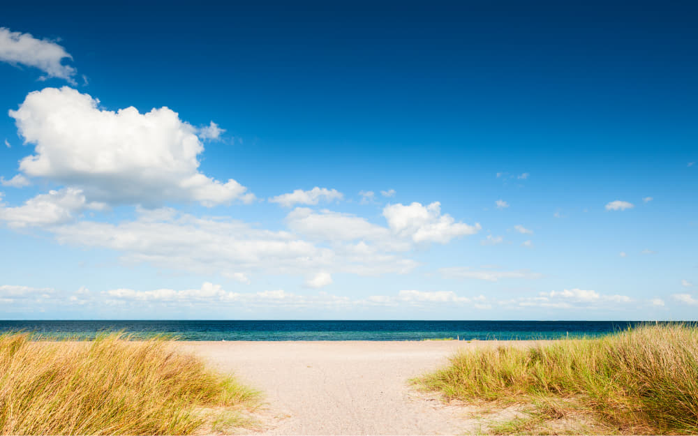 Beach near Copenhagen