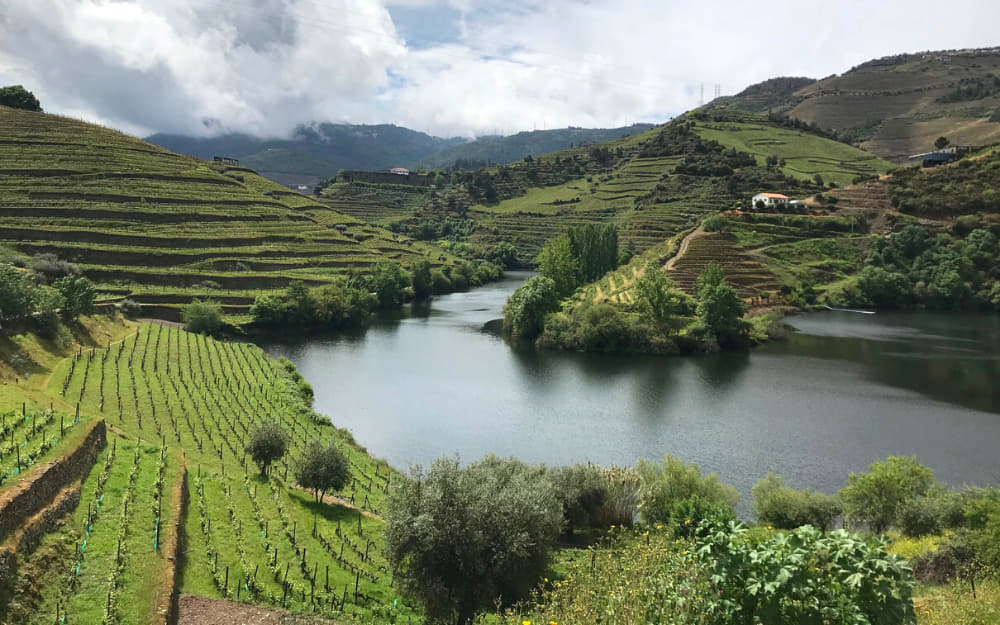 Douro Valley - Road Trips in Portugal © Image Courtesy of Travel-Boo