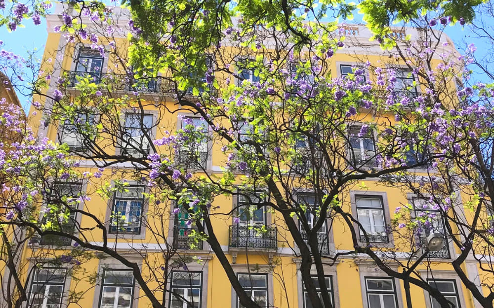 Living in Lisbon – Ultimate Portugal Expat Guide for Moving to Portugal!