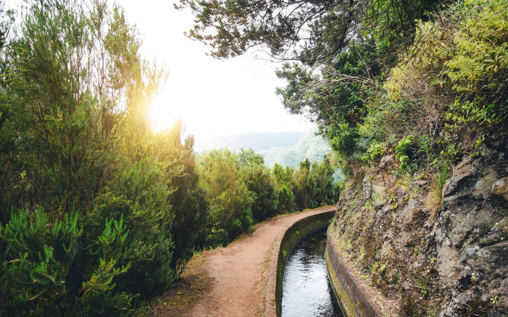 Madeira Hiking - 6 Best and Most Beautiful Walks & Hikes in Madeira, Portugal, Worth Discovering!