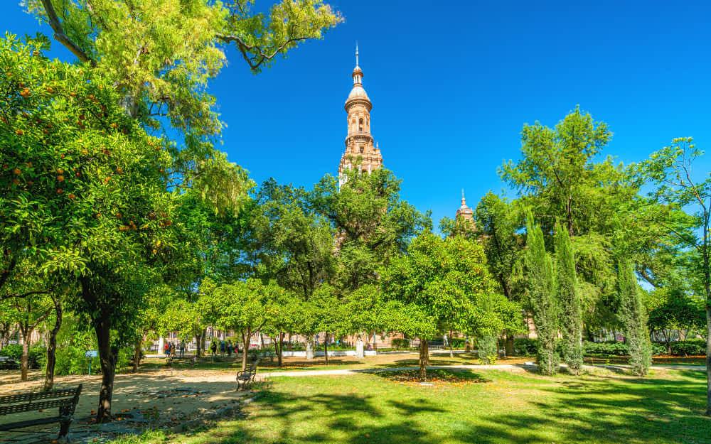 Parque de Maria Luisa - Seville