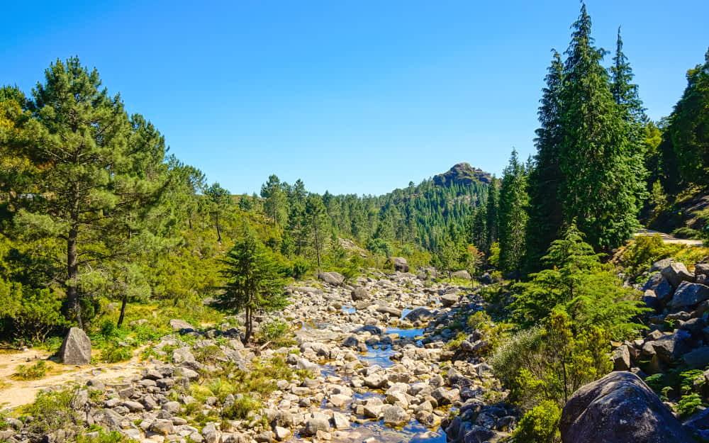 Trilho dos Currais in Peneda-Gerês - Best hikes in Portugal