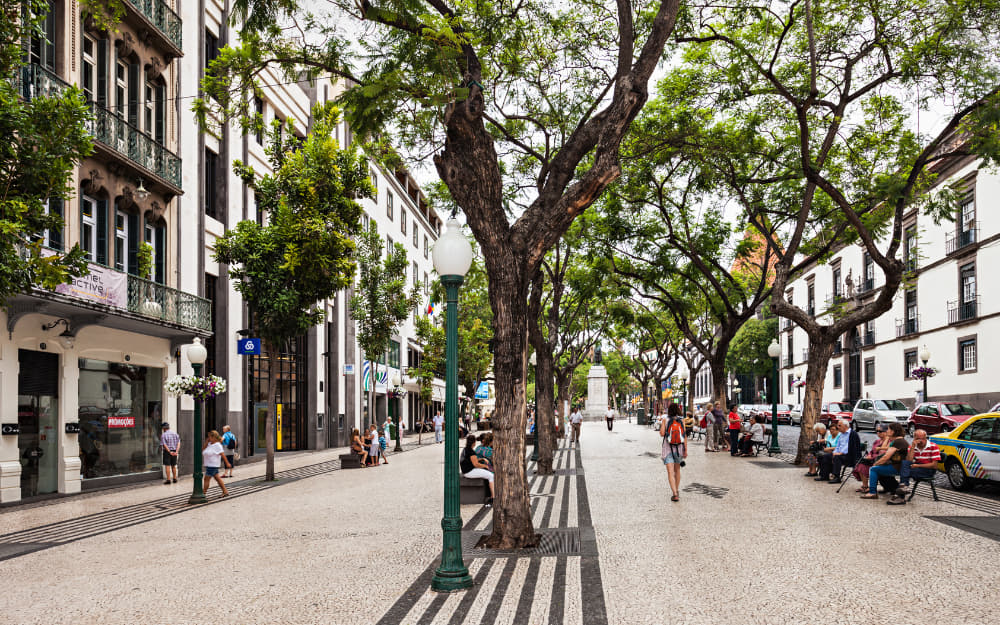 A Street in Funchal © Photo by Andrey Khrobostov from Canva